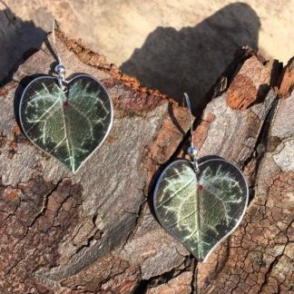 Cyclamen leaf earrings
