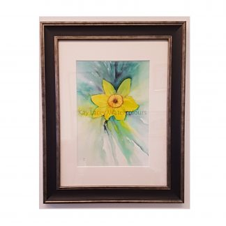 Daffodil framed Watercolour