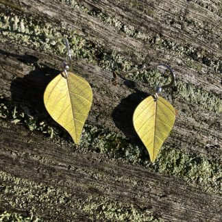 Vibrant green Silver Birch earrings