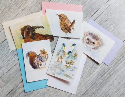 Wildlife cards backed by envelopes