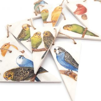 Budgie Bunting