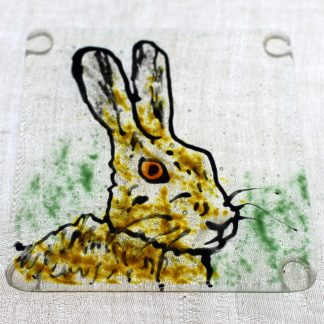 head and shoulders of brown hare on green background