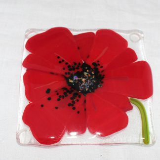 large red poppy with black centre