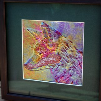 colourful fox in fused glass, framed