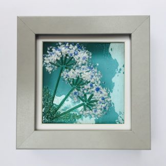 Sweet Cicely fused glass in grey box frame