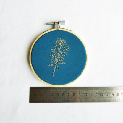 shepherd's purse 10 cm hoop, with ruler to show size