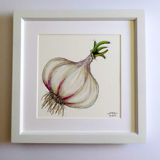 Garlic fine art print