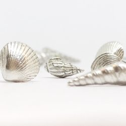 selection of silver scottish seashell earrings