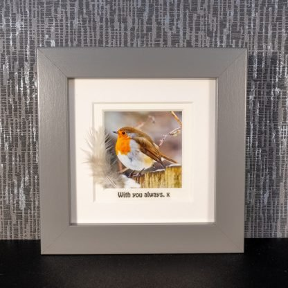 "Framed robin photograph with feather & message ""With you always. x"""