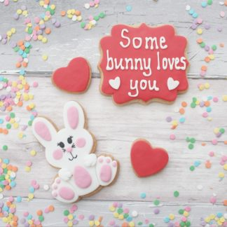 some bunny loves you valentines set