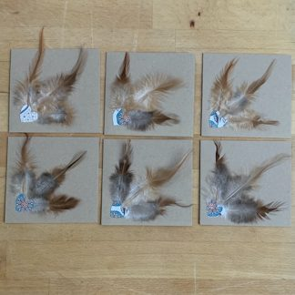 #supersecondssaturday feather notecards