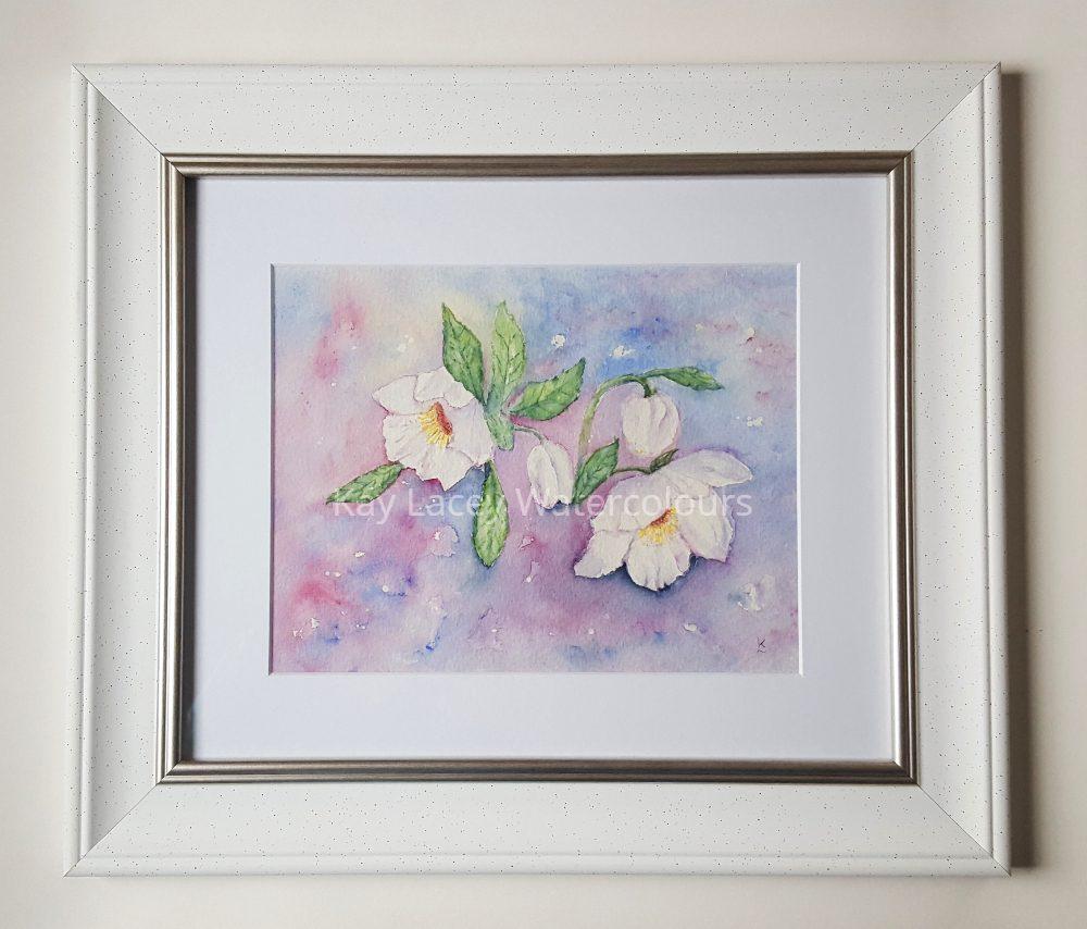 Hellebore Spring Watercolour