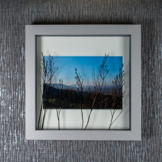 Hand painted foliage silhouettes casting shadows on a view at Birdlip Hill photograph, framed picture by Pictures2Mixtures