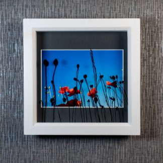Hand painted poppy seed head silhouettes casting shadows over a vibrant photograph, framed picture by Pictures2Mixtures