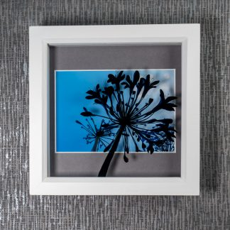 Hand painted agapanthus flower silhouette creating 3D shadows over a deep mounted photograph, framed picture