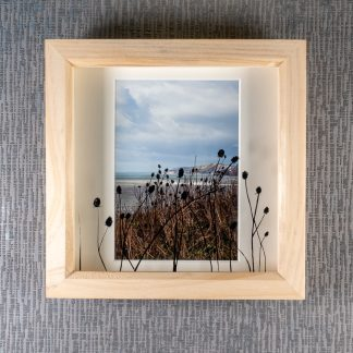 Hand painted teasel silhouettes casting 3D shadows over a sea view portrait photograph, framed picture by Pictures2Mixtures