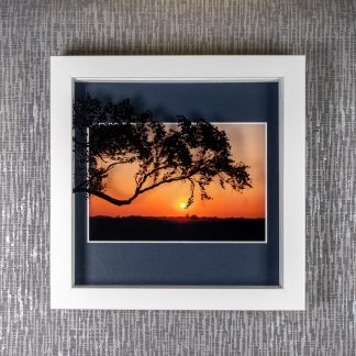 Hand painted tree silhouette creating 3D shadows over a New Forest sunset photograph, framed picture by Pictures2Mixtures