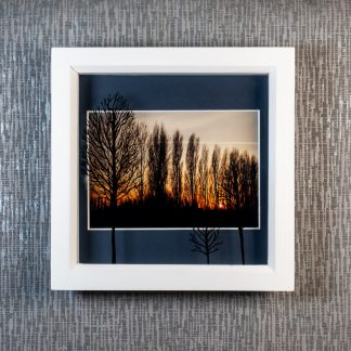 Hand painted tree silhouettes cast 3D shadows over poplar trees & sunset photograph, framed picture by Pictures2Mixtures