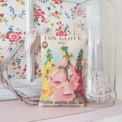 Foxglove Seed Packet Fabric Gift