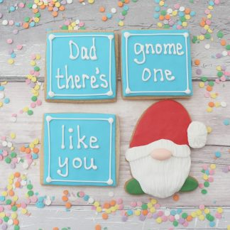Cute father's day cookie set