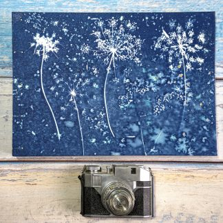 Hand Bound Photograph Album with Original Wet Cyanotype Print Covers -Umbelliferae Like Fireworks - Because Your Memories Are Worth It