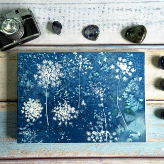 Hand Bound Photograph Album with Original Wet Cyanotype Print Covers … Umbelliferae Like Snowflakes … Because Your Memories Are Worth It