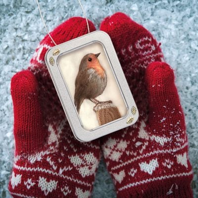 Robin picture, Christmas gift
