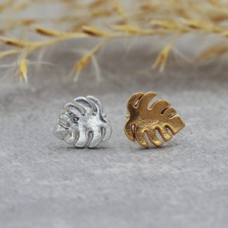 cheese-plant-stud-earrings-gold-vermeil-fine-silver-studs
